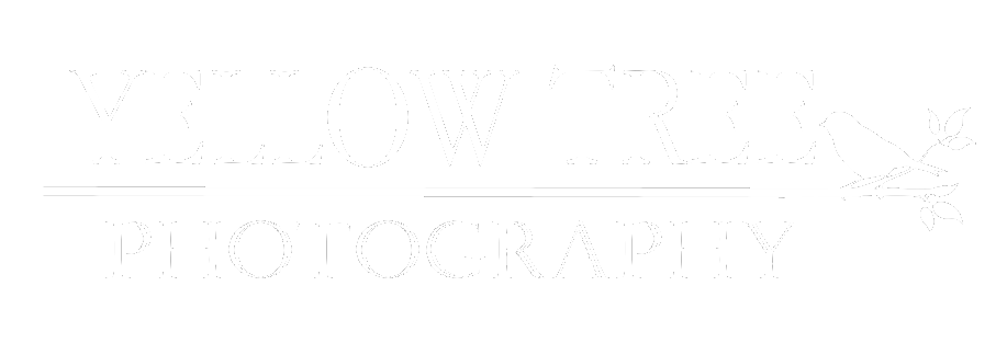 Yellow Tree Photography, LLC - Tri-Cities